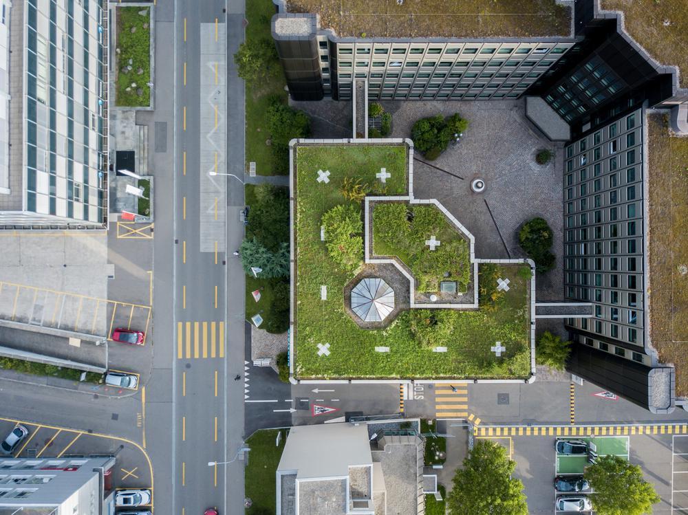 ایده هایی برای روف گاردن (roof garden)