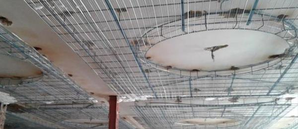 آشنایی با کاربرد رابیتس در صنایع ساختمانی